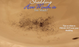 Natural Hair Shedding: How much is Too Much?